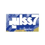 Logo_ulss_155