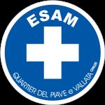 logo_Esam